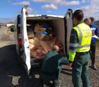 Localizan en Estella un vehículo con 1.200 kg de carne para el consumo en malas condiciones