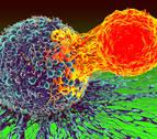 La nueva esperanza contra el cáncer