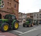 Los agricultores de la Ribera de Estella pedirán el Canal al nuevo Parlamento