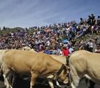 El Tributo de las Tres Vacas evitará el lunes el rito de mano