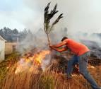 Calor y viento disparan la alerta en las zonas castigadas por el fuego en Portugal
