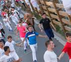 La manada pisotea a un mozo en el primer encierro de las fiestas de Tudela