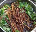Buscan descifrar el enigma de la ayahuasca y su poder contra la depresión