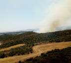 Controlado el incendio que ha quemado 1,5 hectáreas de rastrojo en Artajona