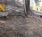 Detenido el autor de cinco incendios provocados en Navarra