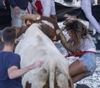 Una mujer, golpeada por un manso en el último encierro de fiestas de Estella