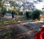 Árboles y carteles derribados por el fuerte viento en Navarra