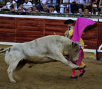 Tarde sin triunfo en Tafalla con los Prieto de la Cal por encima de los toreros