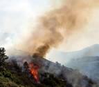 El incendio de Gran Canaria afecta ya a 10.000 hectáreas y avanza hacia el sur de la isla
