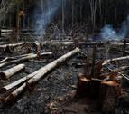 El mundo exige salvar la Amazonia,