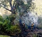 Controlado el incendio en la sierra de Lóquiz en el que han intervenido dos helicópteros y tres aviones
