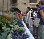 Cirauqui se adelanta al inicio de la vendimia con el Día del Vino