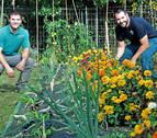 Didáctica entre cultivos ecológicos en la Ciudad Deportiva Amaya