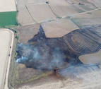 Los bomberos extinguen un incendio forestal en Falces