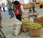 Día de la sidra en Lekunberri