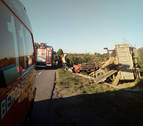 Vuelca un camión con troncos en la NA-3010