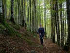 Irati a ciegas: ¿Es posible disfrutar de un bosque sin verlo?