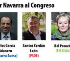 Perfil de los cinco diputados y cuatro senadores por Navarra