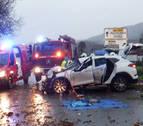 Heridas madre e hija al caer un árbol en un coche en Narbarte