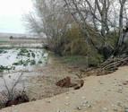 El desbordamiento del Ebro anega siete términos de Buñuel