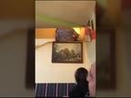 El humor de una familia para bajar a la abuela en su silla de ruedas por las escaleras