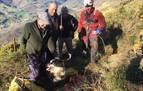 Los bomberos rescatan a dos perros que habían caído en sendas simas