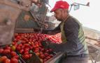 Los agricultores generan con las cosechas 13.700 contratos al año