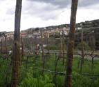 San Martín de Unx vuelve a homenajear a su cultura vitivinícola con seguridad