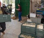 UAGN promueve la venta de espárrago fresco y productos locales con el sello 'De casa'