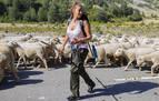Mariló Montero vuelve a La 1 acompañada por un rebaño de ovejas