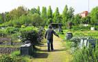 Nuevas instrucciones para trabajar los huertos en el municipio o en el colindante