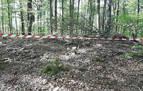 Abierto expediente sancionador por los daños al dolmen Fagamendi