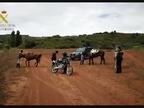 Denunciados tres jinetes en Villamayor de Monjardín que intentaron huir a caballo