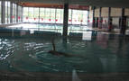 Otros cinco municipios renuncian a abrir las piscinas de verano