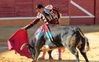 Tudela podría celebrar dos festejos taurinos mayores en agosto
