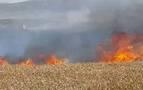 Los bomberos intervienen en ocho incendios esta semana