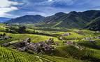 Viajar, ver, sentir. Los paisajes del vino