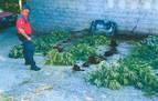Detenido en Lesaka por tráfico de drogas y agredir a un policía foral