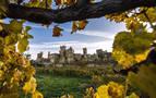 'Olite, un pueblo para enmarcar', premio popular de Patrimonio
