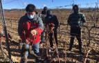 San Martín de Unx pone freno a la falta de relevo entre los viticultores