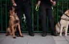 La Policía Municipal de Pamplona realiza ocho actas de aprehensión de drogas