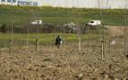Comienza la reforestación de las huertas ilegales de Echavacoiz