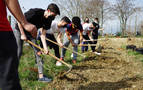 Minibosque contra el carbono en Berriozar de la mano de estudiantes del CI Cuatrovientos