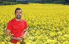 La colza, de colorear los campos de amarillo a biodiésel en Francia