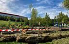 Polémica  en Beriáin por la tala de más árboles de los anunciados