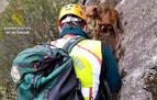 Rescatada una perra atrapada en una pared de la Foz de Lumbier