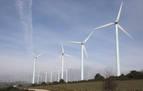 Sacyr rebaja de cinco a dos los parques eólicos y baraja un tercero