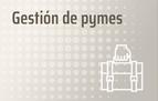 Gestión de pymes.