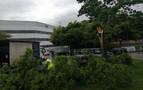 La caída de una rama causa retenciones de tráfico en Villava