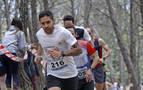 Corriendo entre pinos
